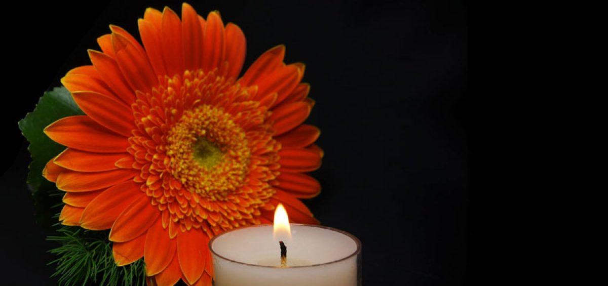 De Betekenis Van Bloemen In Het Rouwboeket Boca Kaarsen